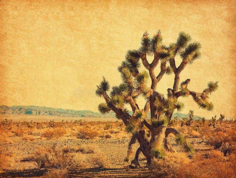Paysage du désert avec le grand Joshua Tree, le désert de Mojave, Californie, États-Unis Photo retro Texte de papier ajouté photo libre de droits