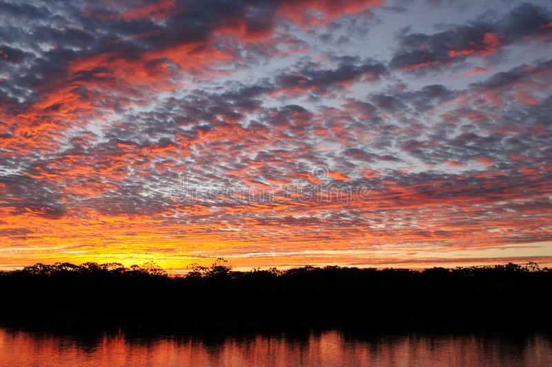 Paysage du fleuve Amazone au Brésil image libre de droits