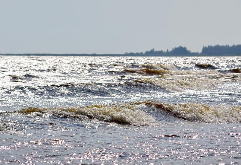Paysage du nord avec la forêt et le lac Ladoga photographie stock libre de droits