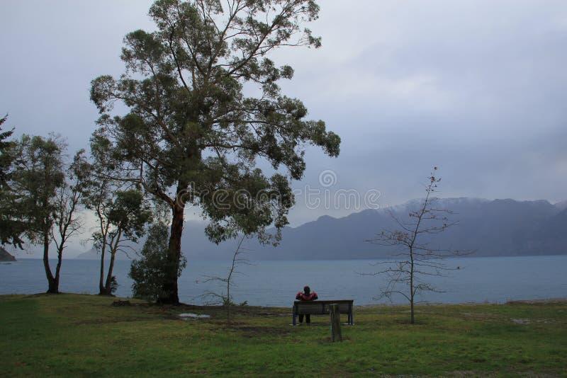 Paysage du Nouvelle-Zélande par la rivière photographie stock
