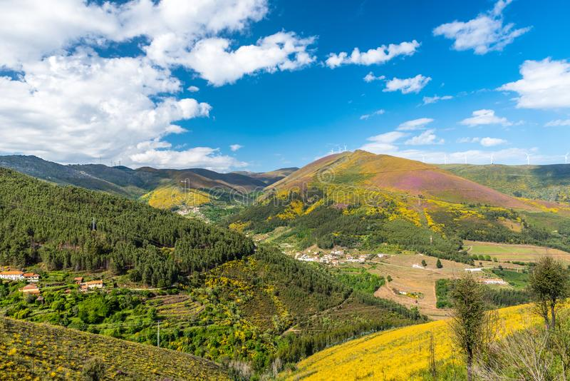 Paysage du regionin Portugal - vignobles de rivi?re de Douro photos stock