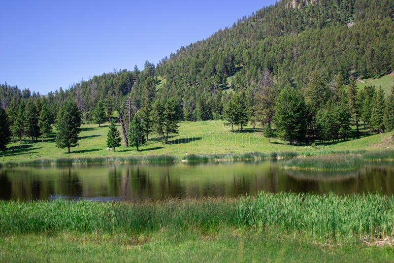 Paysage du Wyoming en bas de la colline photos stock