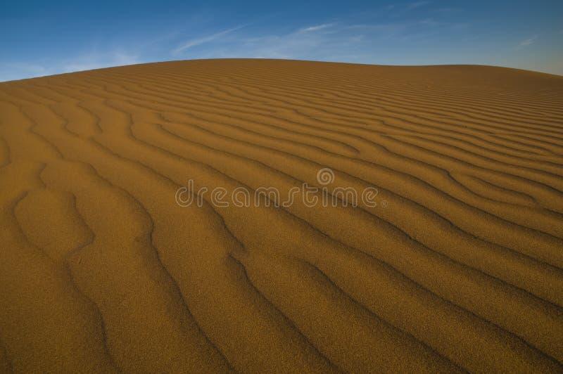 Paysage dunaire, La Pampa, Argentine photos stock