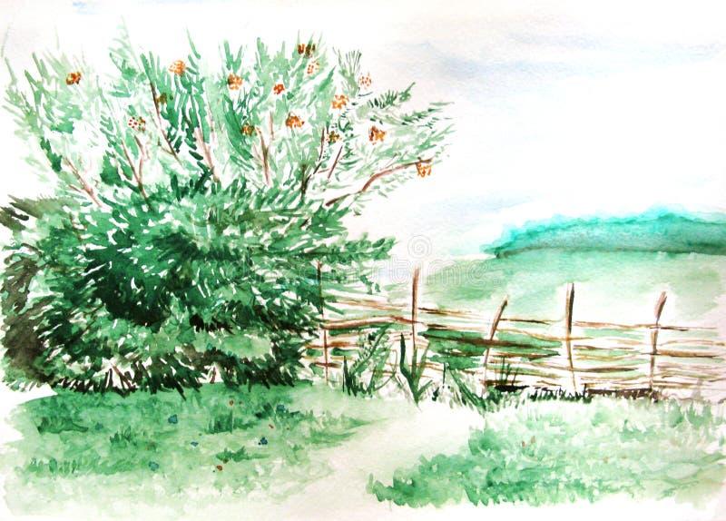 Paysage en bois de nature de forêt de champ de campagne d'aquarelle illustration libre de droits