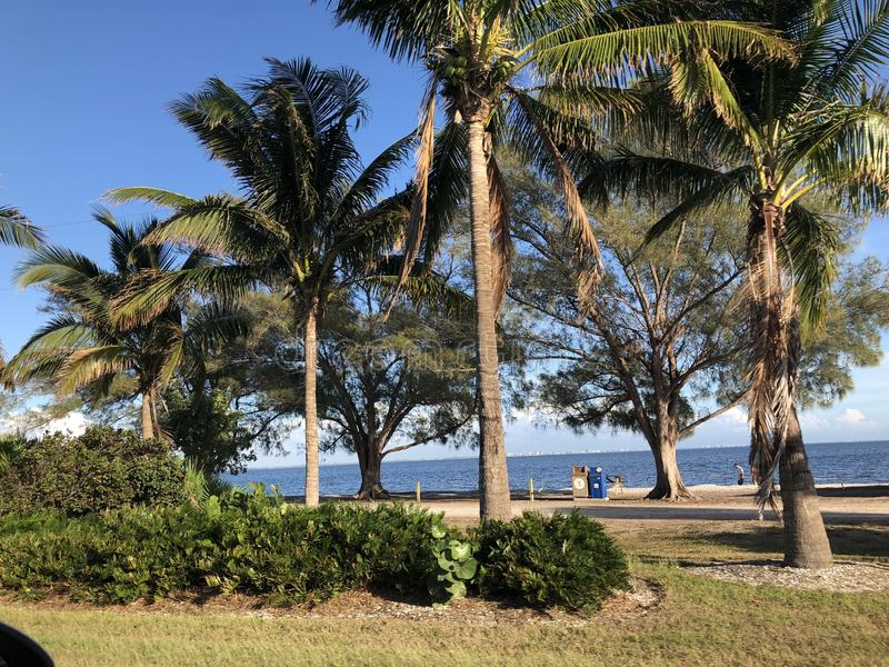Paysage en Floride images libres de droits