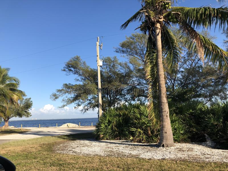 Paysage en Floride photo stock