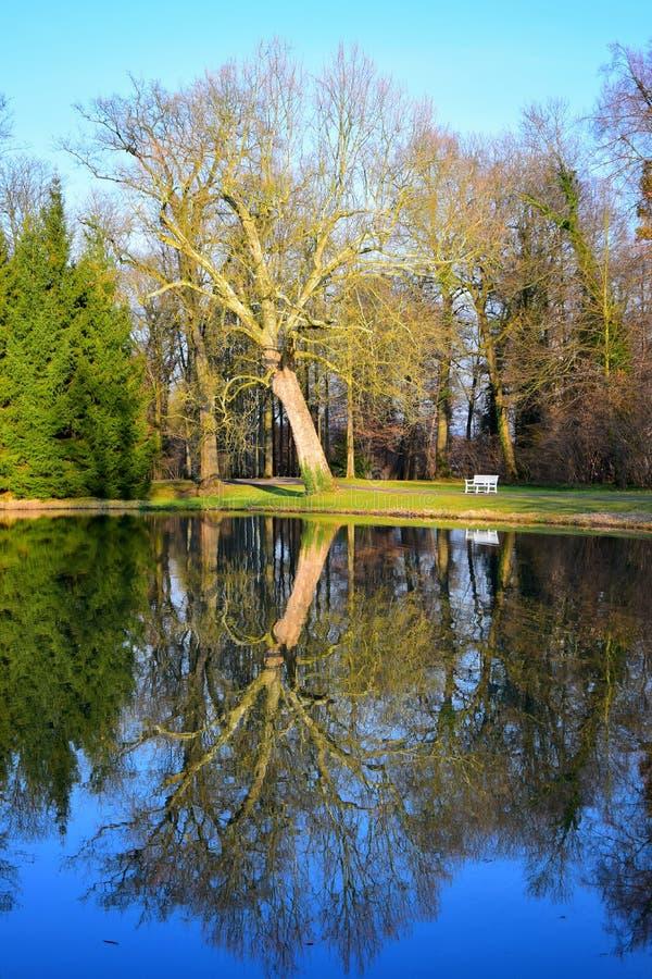 Paysage en parc en Allemagne, avec un banc blanc et des arbres sans feuilles se reflétant dans un lac photographie stock