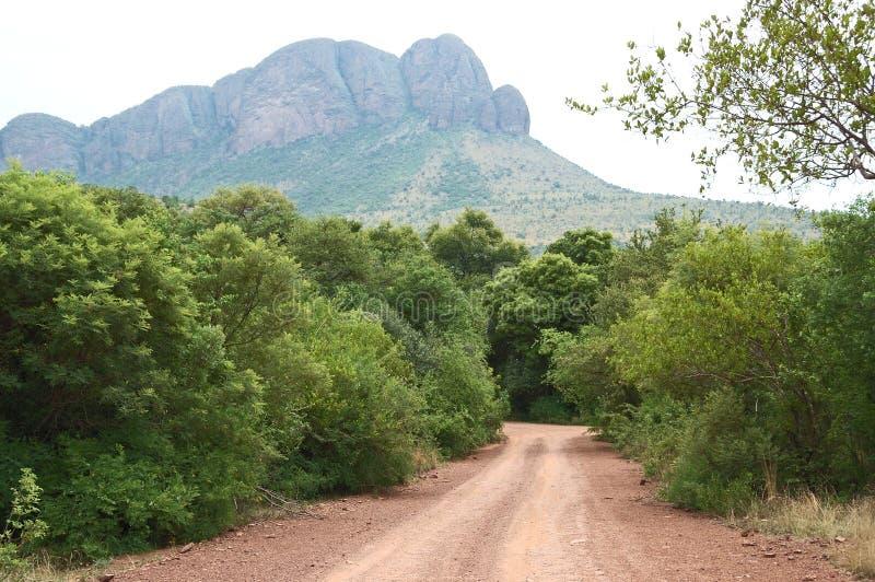 Paysage en parc national de Marakele images stock