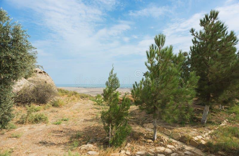 Paysage en parc national de Qobustan de secteur l'azerbaïdjan photo stock