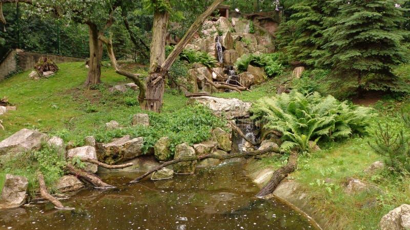 Download Paysage en Pologne photo stock. Image du arbres, poland - 56489306
