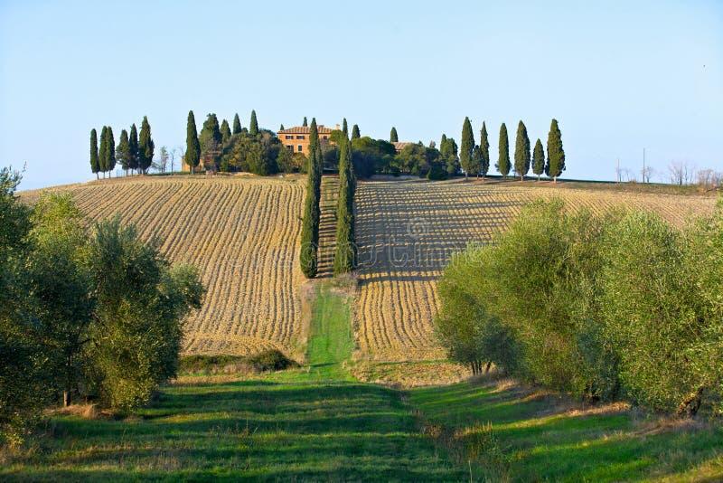 Paysage en Toscane. images stock
