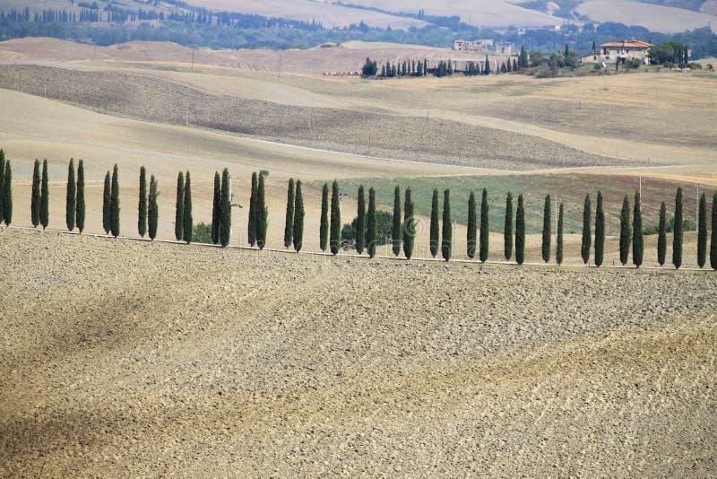Paysage en Toscane image libre de droits