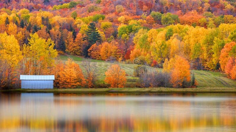 Paysage et réflexion d'automne images libres de droits