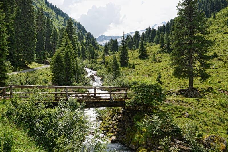 Paysage européen d'Alpes de vallée le Tirol Autriche de Zillertal photos libres de droits