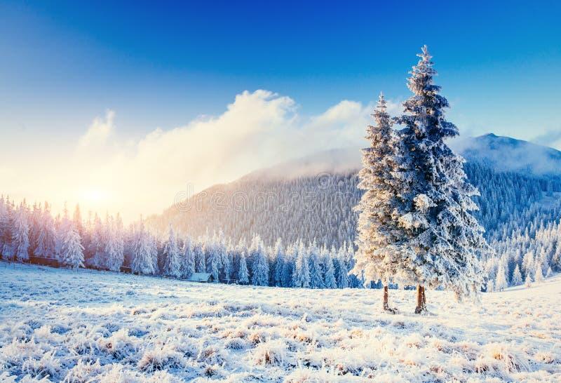 Paysage fantastique d'hiver dans les montagnes Coucher du soleil Dans l'anticipa photos libres de droits