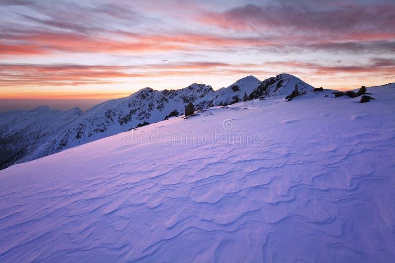 Paysage fantastique d'hiver de soirée et de matin Ciel obscurci coloré Arbre couvert par neige magique du monde de beauté images libres de droits