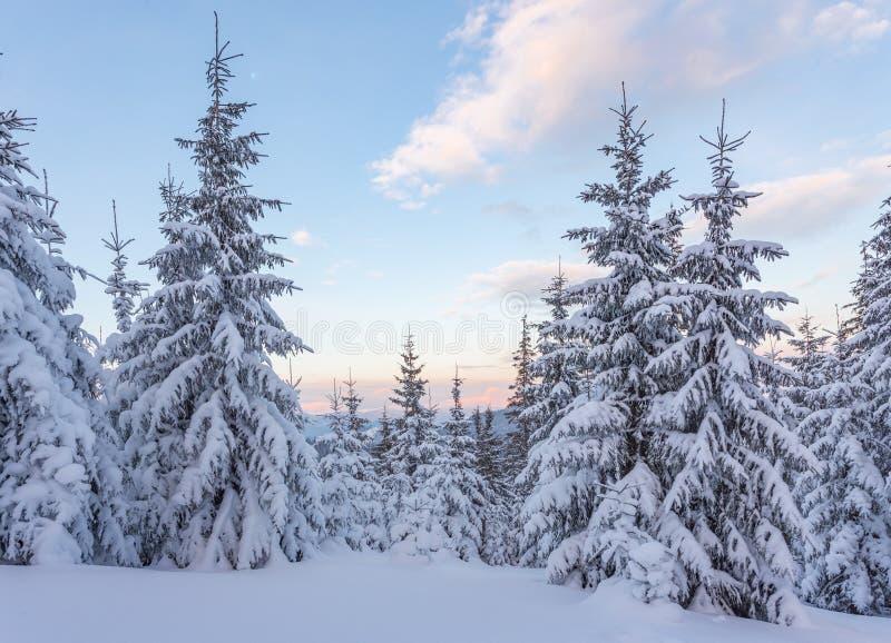 Paysage fantastique de montagne de matin Ciel coloré obscurci Carpathien, Ukraine, l'Europe photographie stock