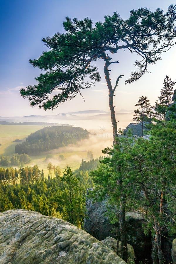 Paysage flou de matin sous la colline croisée dans Adrspach image stock