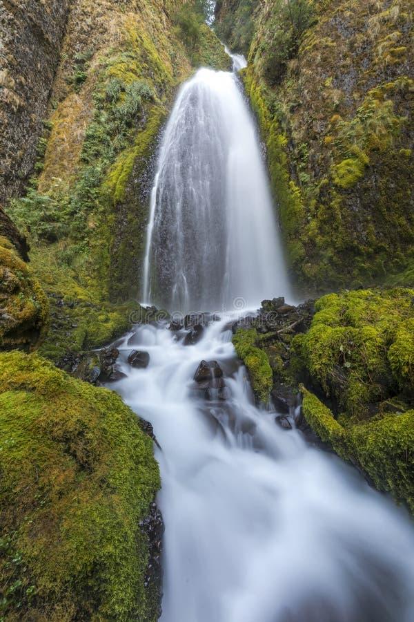 Paysage, fond, beau, Portland, voyage, Orégon, OU, les Etats-Unis photos libres de droits