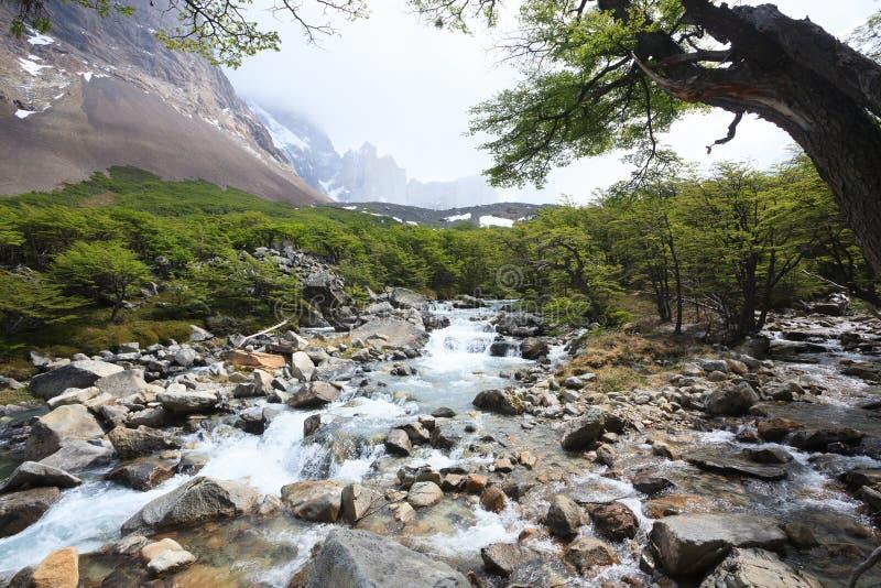 Paysage français de vallée, Torres del Paine, Chili photographie stock libre de droits