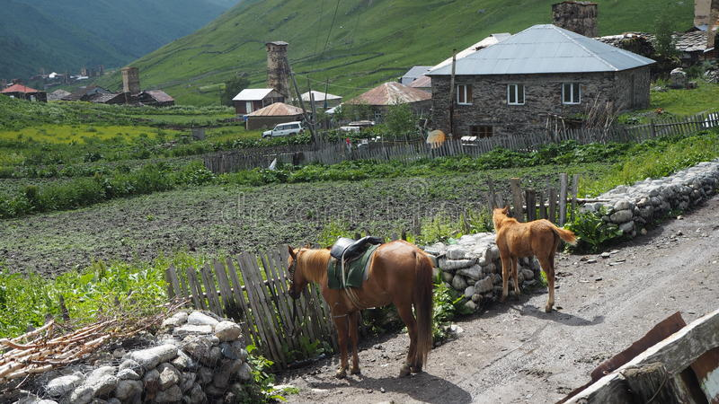 Paysage géorgien photo stock