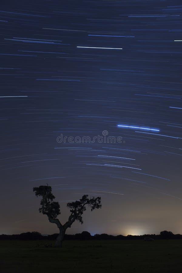 Paysage gentil de nuit photographie stock