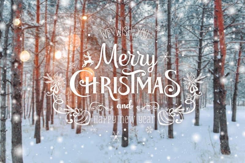 Paysage givré d'hiver à l'arrière-plan neigeux de Noël de forêt avec des sapins et au fond brouillé de l'hiver avec le Joyeux Noë photos libres de droits