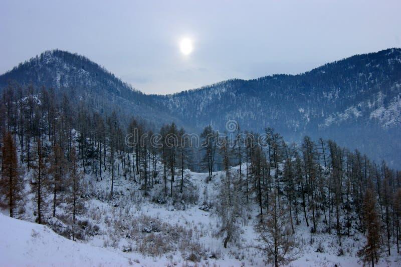 Paysage hivernal des sommets enneigés photos libres de droits