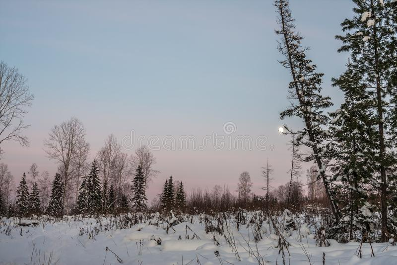 Paysage hivernal photographie stock