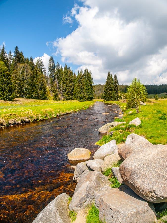 Paysage idyllique avec la rivière calme de montagne le jour ensoleillé Pierres blanches et prés et arbres verts Parc national de  photographie stock