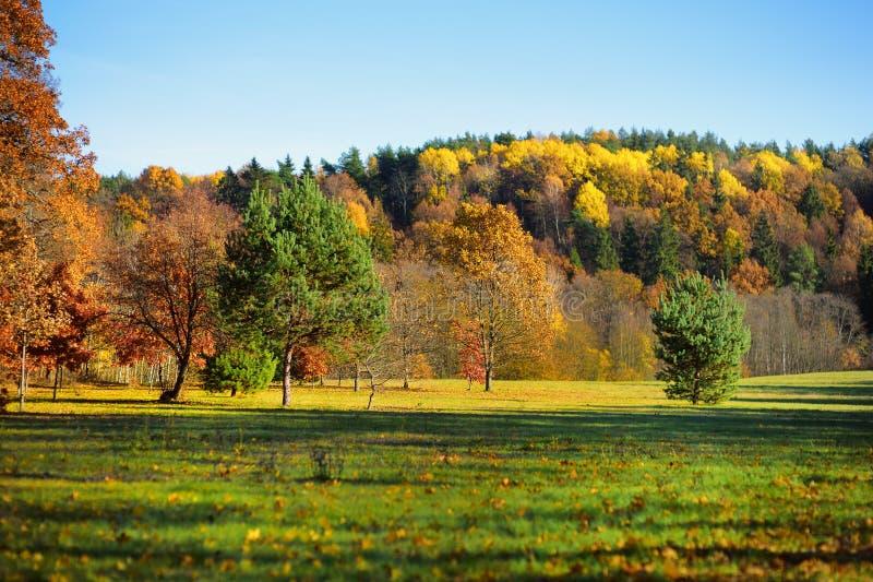 Paysage idyllique d'automne en Lithuanie image libre de droits