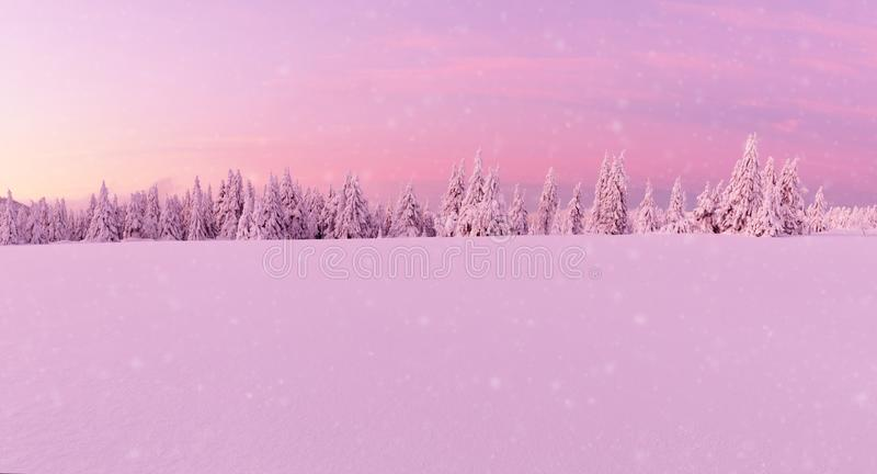 Paysage idyllique panoramique d'hiver images stock