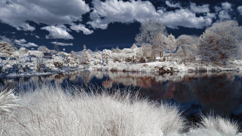 Paysage infrarouge dans des couleurs fausses d'un lac et d'un feuillage photo libre de droits