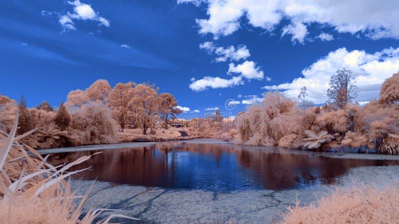 Paysage infrarouge dans des couleurs fausses d'un lac et d'un feuillage photos stock