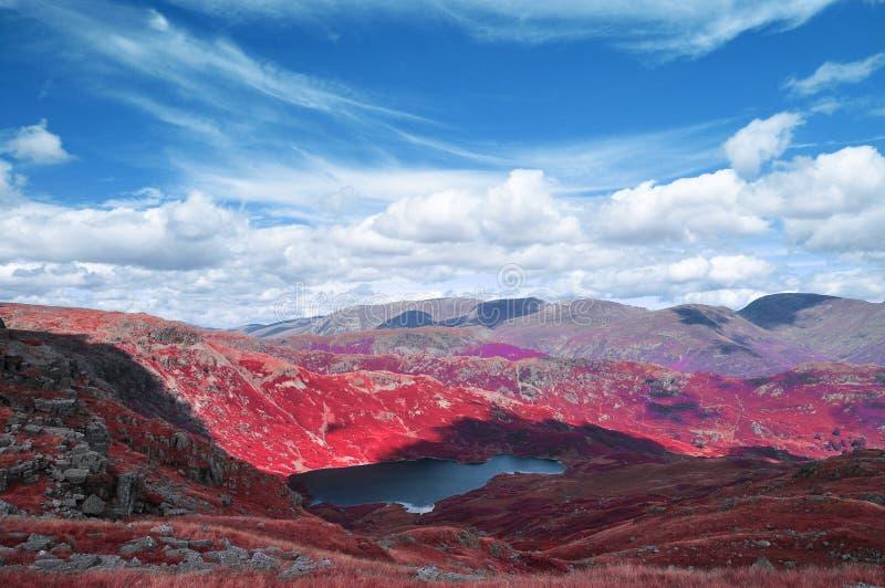 Paysage infrarouge de secteur de lac images stock