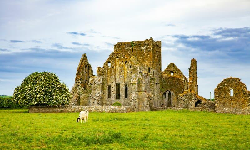 Paysage irlandais avec des ruines de château images stock