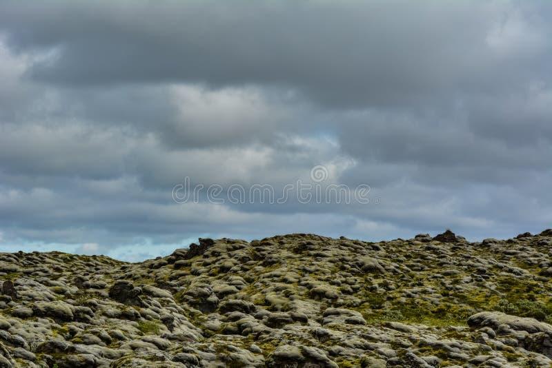 Paysage islandais typique avec des pierres de lave couvertes par MOIS vert images stock
