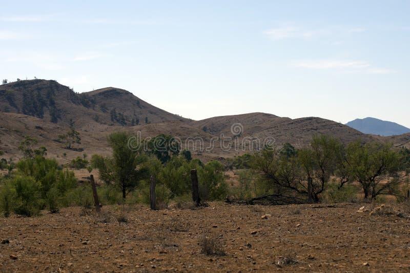 Paysage le long de manière de gammes de ` de Flinders, au nord de colporteur, Australie du sud photos stock
