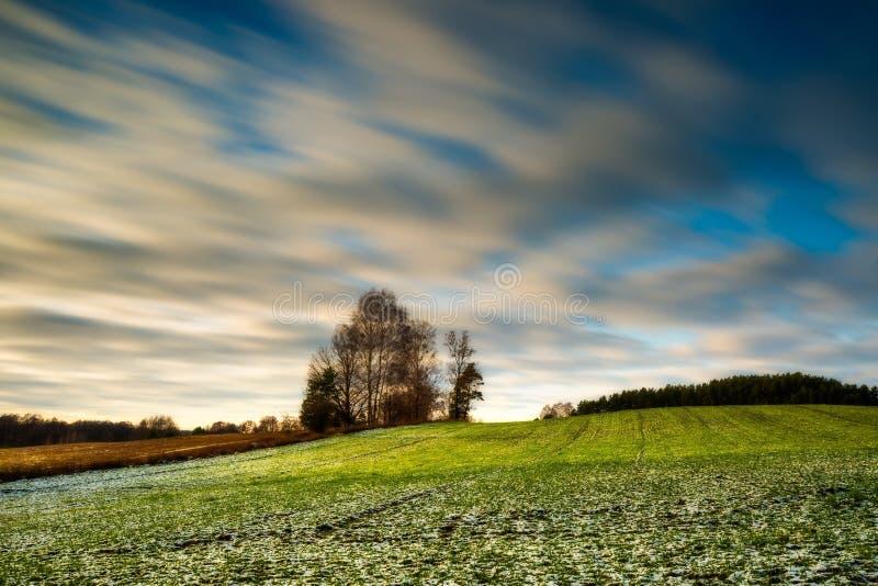Paysage long de champ d'exposition d'hiver tôt photos stock