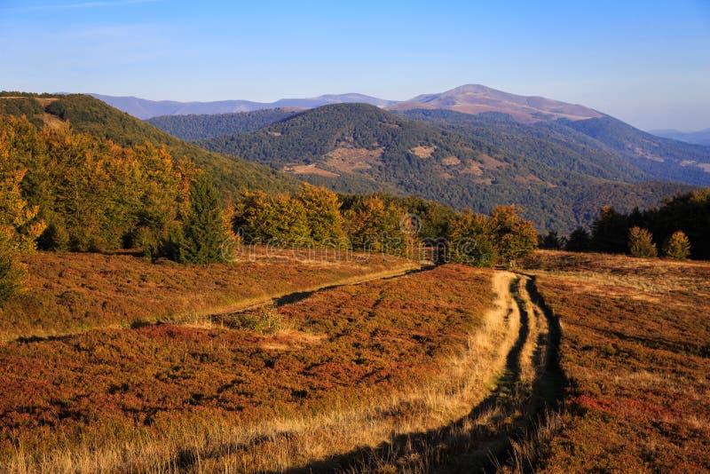 Paysage lumineux d'automne dans les montagnes carpathiennes image stock