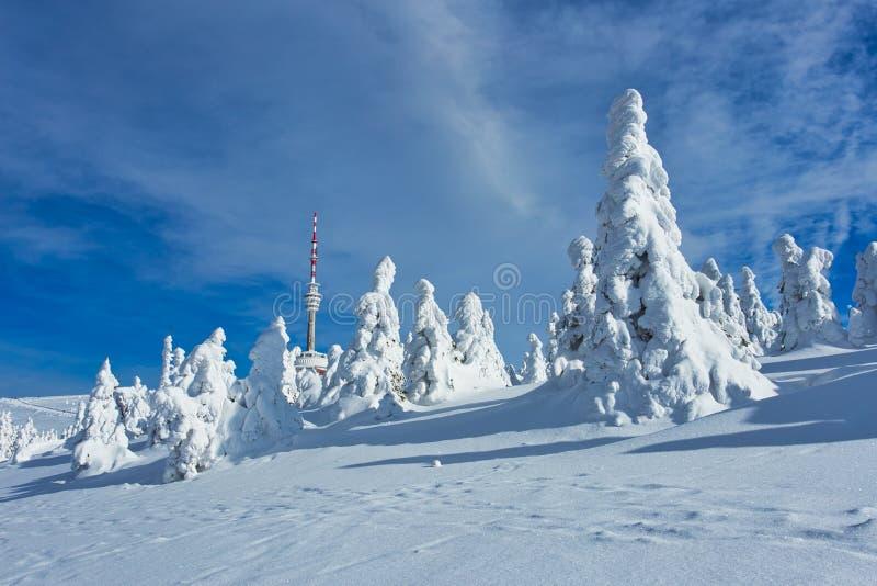 Paysage majestueux d'hiver rougeoyant par lumi?re du soleil, emplacement hivernal dramatique de sc?ne image stock