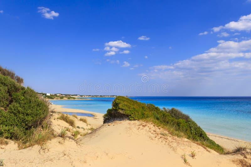 Paysage marin d'été, côte de Pouilles : Plage Tarente de Marina di Lizzano Dans le premier plan les dunes avec méditerranéen luxu photo libre de droits