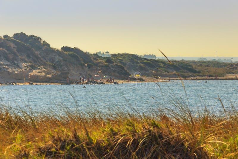 Paysage marin d'été : Réserve naturelle de Torre Guaceto Maquis Pouilles-ITALIE-méditerranéens de BRINDISI : la nature détendent images libres de droits