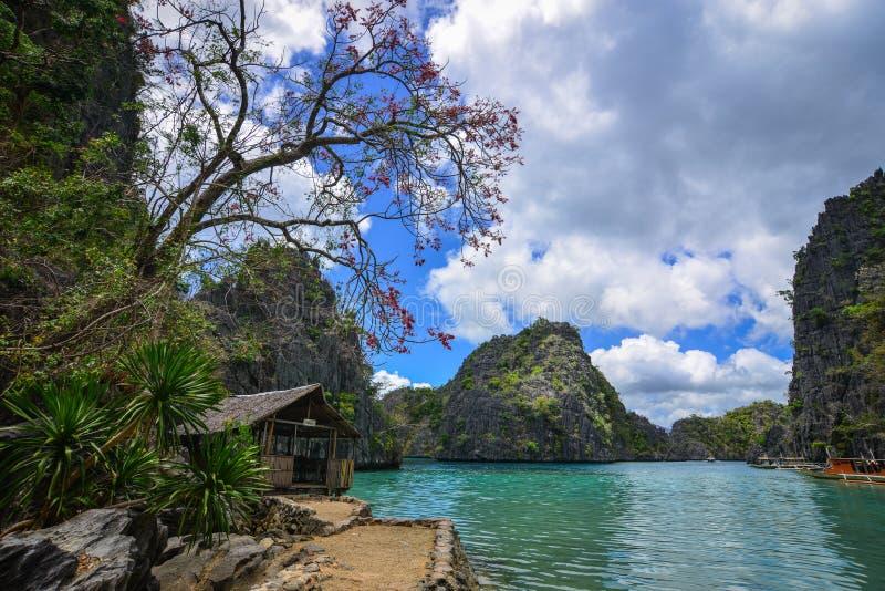 Paysage marin d'île de Coron, Philippines photographie stock libre de droits