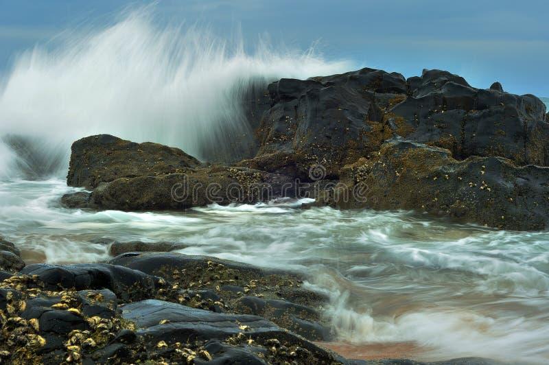 Paysage marin dans Amanzimtoti, Kwa Zulu Natal, Afrique du Sud photo libre de droits