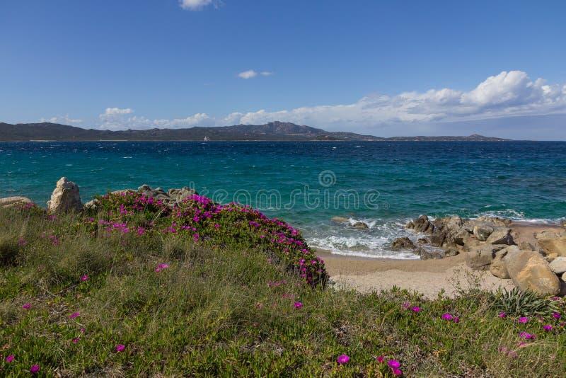 Paysage marin de Costa Smeralda avec la beaux eau et purpl de turquoise image libre de droits