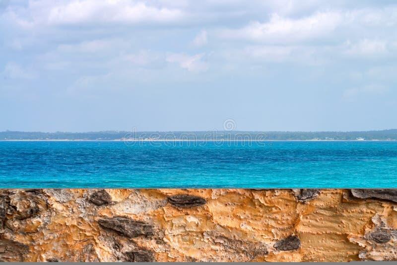 Paysage marin exotique coloré près de rivage de Zanzibar Afrique images libres de droits