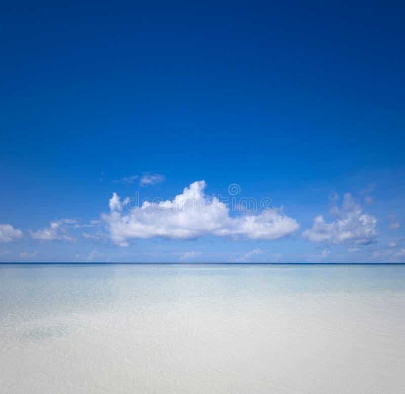 Paysage marin gentil dans l'Océan Indien images libres de droits