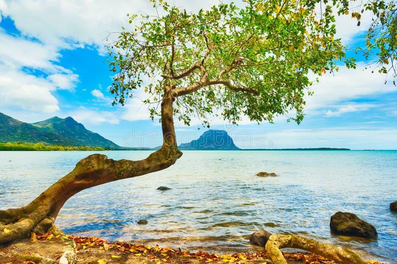 Paysage marin Le Morne sur un fond photo stock