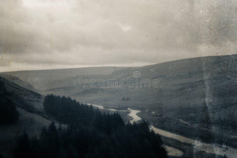 Paysage maussade d'une rivière traversant une vallée morne, hivers, marais, à côté des pins. Avec un millésime, sépia, vieu images stock